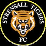 Tigers badge